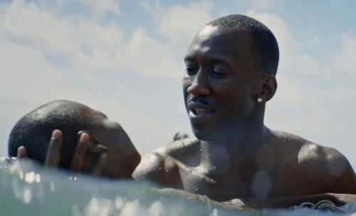 moonlight-movie-water